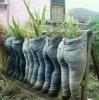 eski kot pantolonlarla tarım yapmak