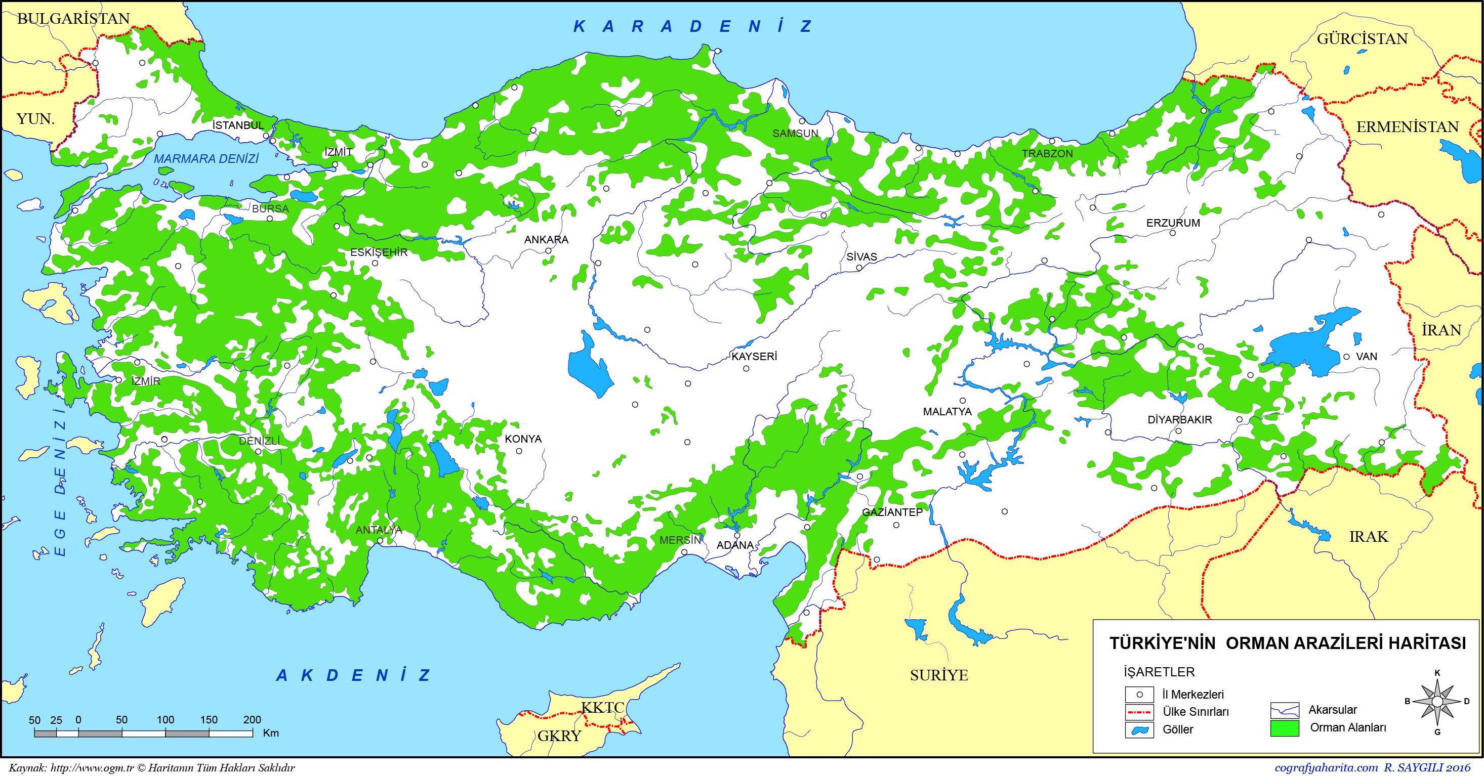 Kuzey Amerikanın doğal alanları: özellikleri