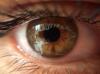 sözlük yazarlarının gözleri