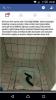 alaturka tuvalette fotoğraf çektiren velet