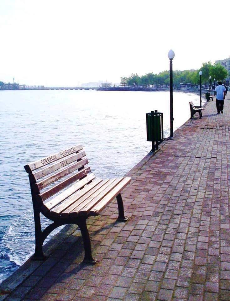 çınarcık belediyesi götünü denize dön kapmanyası