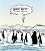 penguenler neden uçamazlar