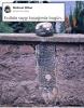 dedesinin mezarını okuyamayınca beton döken torun