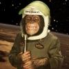 ilk kürt astronot