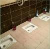 gümüşhane bayburt arasında bulunan roma tuvaleti