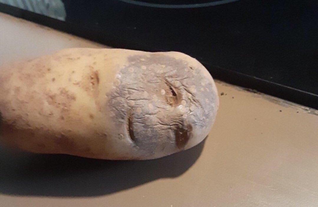 kilogramı 50 liraya patates almak