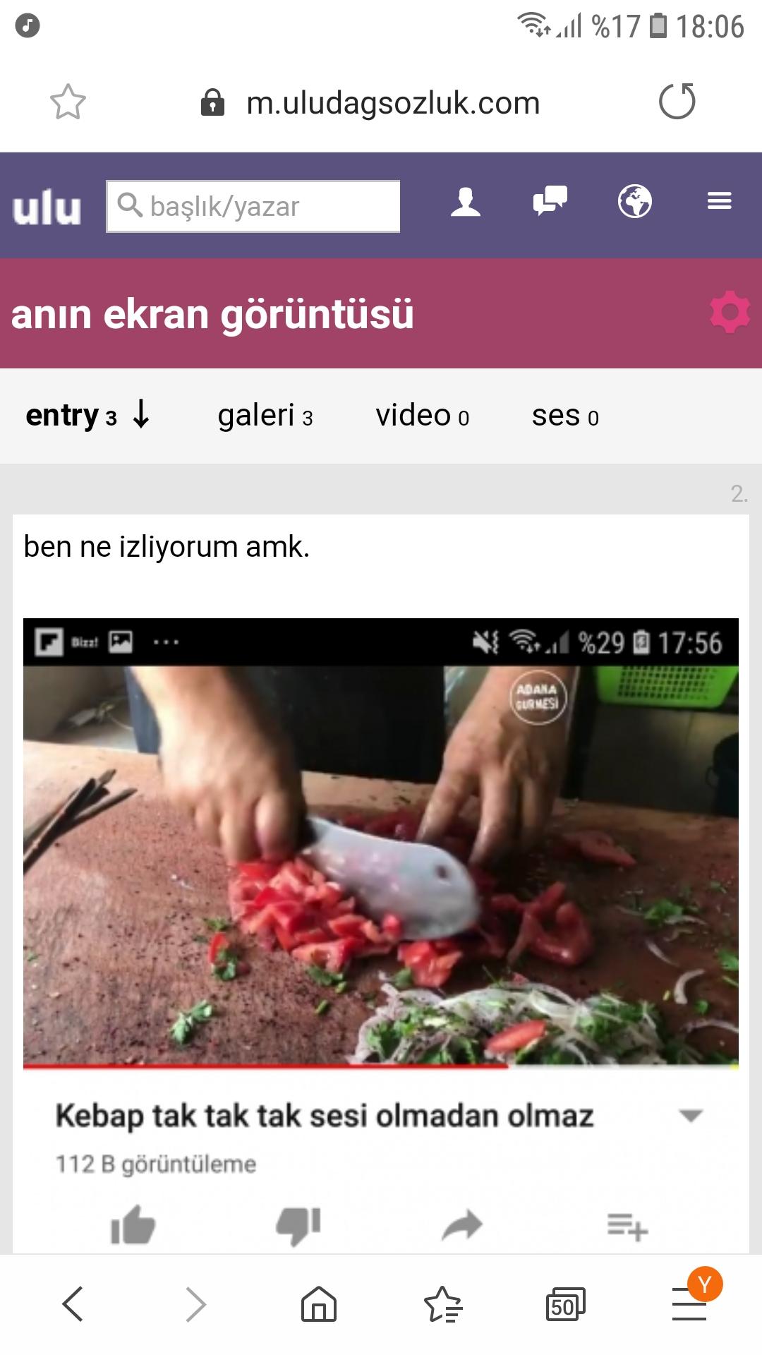 anın ekran görüntüsü