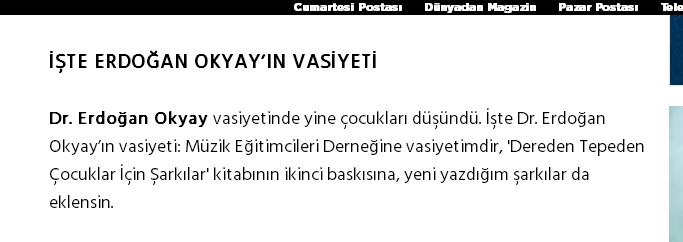 erdoğan okyay