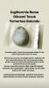 roma dönemine ait tavuk yumurtasının bulunması