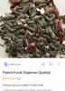 ayçekirdeğinin papağan yemi olduğu gerçeği