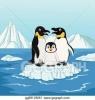 penguenlerin çok minnoş canlılar olmaları