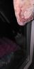 gecenin bu vaktinde yiyecek isteyen sokak kedisi