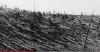 tunguska patlaması 30 haziran 1908