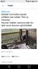 norveç in hayvan haklarına saygısı