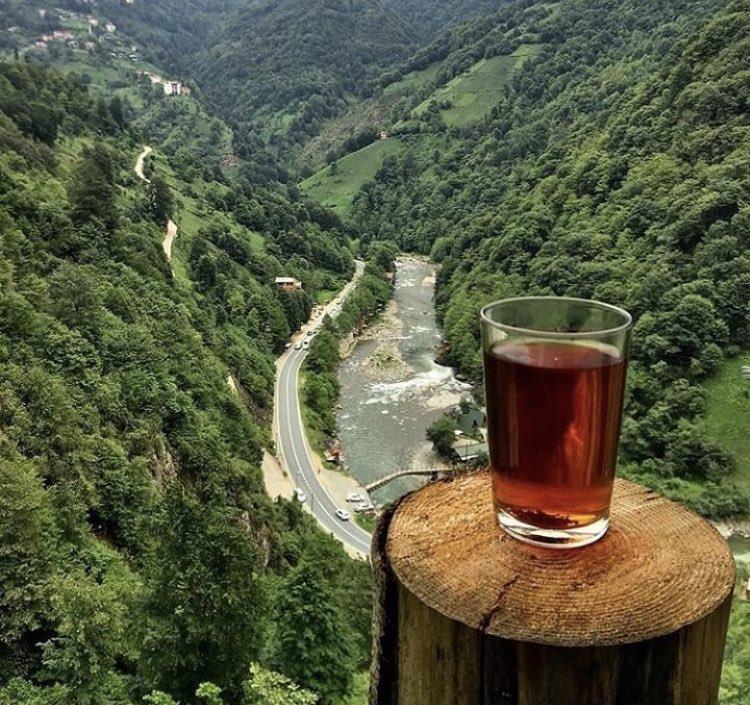su bardağında çay içen insan tipi
