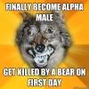 alfa erkek deyince akla gelen ilk tip