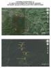 zonguldak ta 10 bin ağaç kesen kanadalı firma