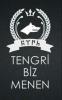 tengricilik