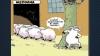koyunların tayyip i bırakması için gereken şey