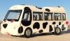 pembe otobüs uygulaması