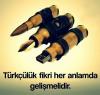 türkçü