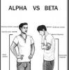 alfa erkek