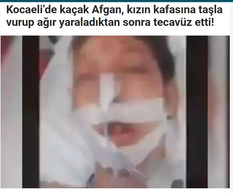 türk sanayisi her şeyi batılılara borçludur
