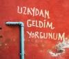 yazarların hayatını özetleyen duvar yazıları