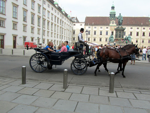 ibb nin 224 atın öldüğünü itiraf etmesi