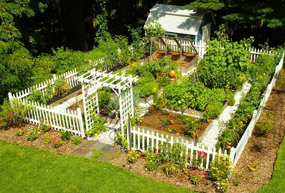 Оригинальные сады и огороды